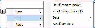 Insert EXIF tag meta data using Quick File Rename